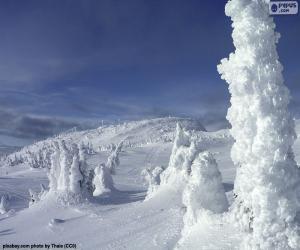 Frozen landscape puzzle