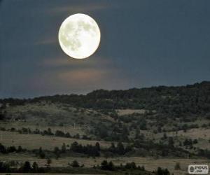 Full moon puzzle