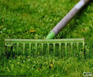 Gardener rake puzzle