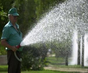 Gardener tending plants, watering puzzle