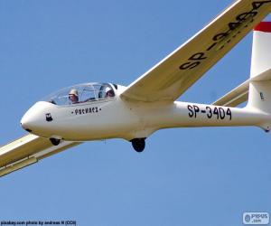 Gliding, glider puzzle