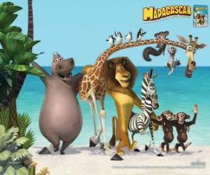 Gloria the Hippo, Melman the giraffe, Alex the lion, Marty the zebra with other protagonists of the adventures puzzle