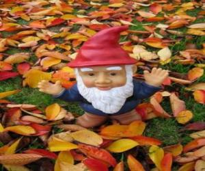 Gnome or dwarf puzzle