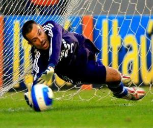 Goalkeeper ready to catch the ball puzzle
