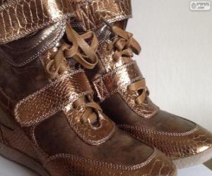 Golden booties puzzle