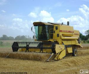 Grain combine harvester puzzle