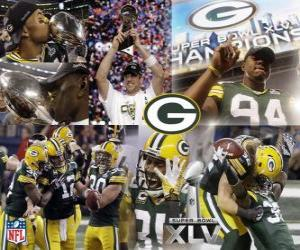 Green Bay Packers celebrate their Super Bowl 2011 win puzzle