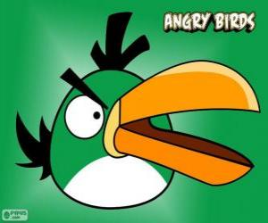 Green Bird puzzle