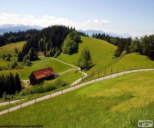 Green meadows Mountain puzzle