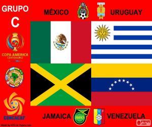Group C, Copa América Centenario puzzle