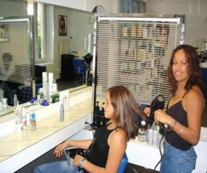 Hairdresser combing and drying the hair to a client in the beauty salon or the hairdressing salon puzzle