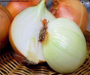 Halved onion puzzle