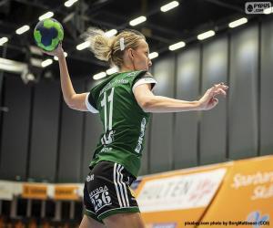 Handball player puzzle