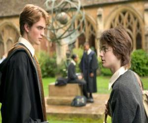 Harry Potter and his friend Cedric Diggory puzzle