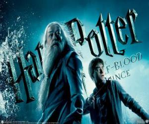 Harry Potter and the Half-Blood Prince puzzle