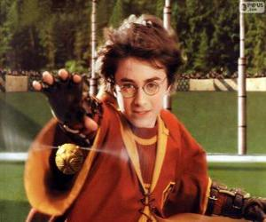 Harry Potter throwing a ball puzzle