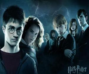 Harry Potter with his friends puzzle