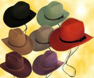 Hats of various colors puzzle