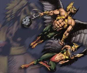 Hawkman or Hawkgirl puzzle