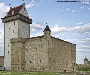 Hermann Castle, Estonia puzzle