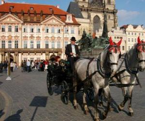 Horse carriage - Carriage puzzle