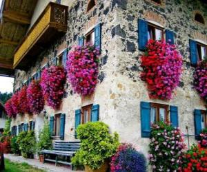 House in the spring with flowers in the windows puzzle