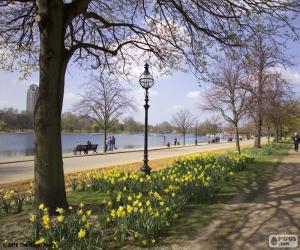 Hyde Park, London puzzle