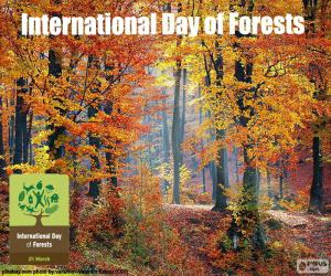 International Day of Forests puzzle