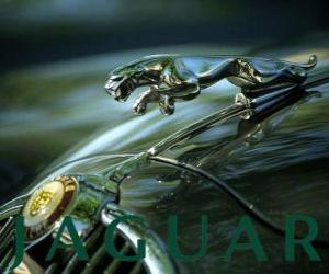 Jaguar logo, British brand of luxury cars and sports cars puzzle