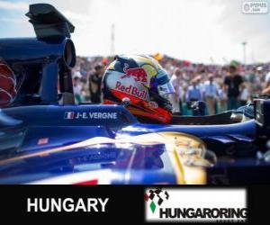 Jean-Eric Vergne - Toro Rosso - Hungaroring, 2013 puzzle