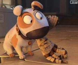 Jeff the dog with the arm of a mummy in the mouth puzzle