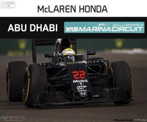 Jenson Button, 2016 Abu Dhabi GP puzzle