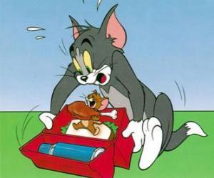 Jerry eats Tom picnic puzzle