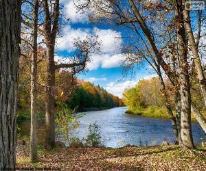 Jumbo River, United States puzzle
