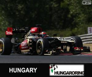Kimi Räikkönen - Lotus - Hungarian Grand Prix 2013, 2º classified puzzle