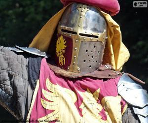 Knight helmet puzzle