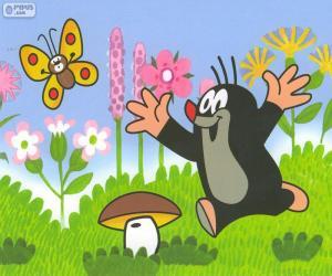 Krtek the Little Mole running puzzle