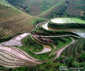 Landscape of rural China puzzle