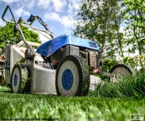 Lawn mower puzzle