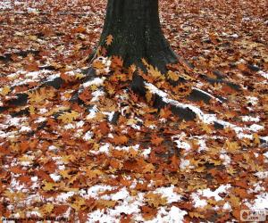 Leaves and snow puzzle