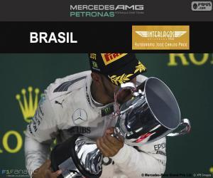Lewis Hamilton, 2016 Brazilian GP puzzle
