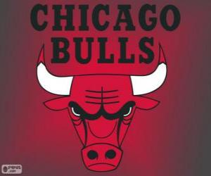 Logo Chicago Bulls, NBA team. Central Division, Eastern Conference puzzle