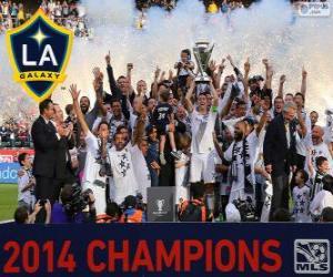 Los Angeles Galaxy, 2014 MLS champion puzzle