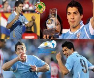 Luis Suarez best player in the Copa America 2011 puzzle