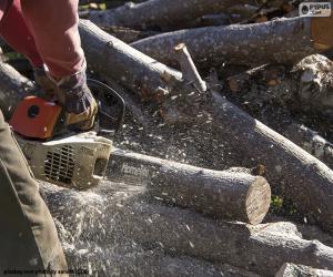 Lumberjack puzzle