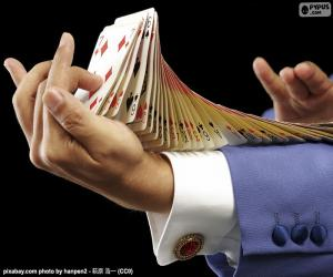 Magician, card trick puzzle