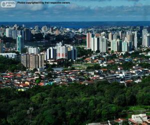 Manaus, Brazil puzzle
