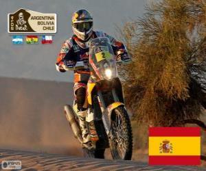 Marc Coma, Dakar 2014 puzzle