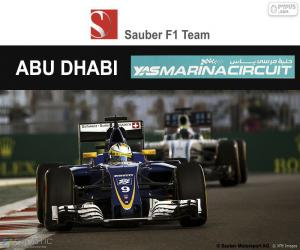 Marcus Ericsson, 2016 Abu Dhabi GP puzzle