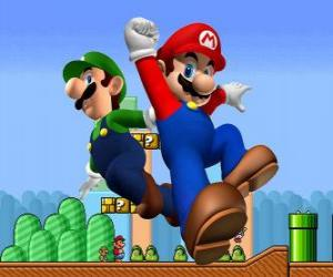 Mario and his brother Luigi, the most famous plumbers puzzle